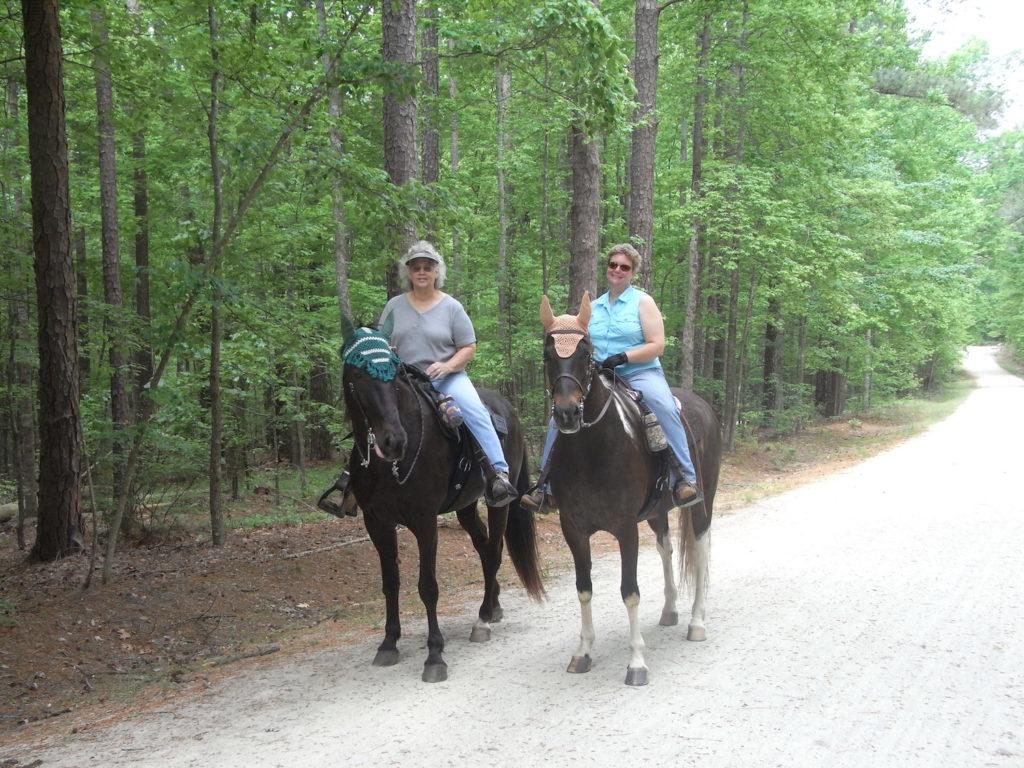 州立公園のトレイルで乗馬を楽しむ